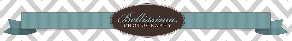 Bellissima Blog | Chicago Photographer logo